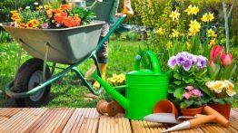 sugestoes-de-nomes-para-empresa-de-jardinagem